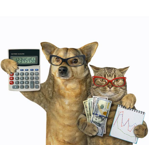 Expense Reduction with cat and dog holding money, calculator, and business charts